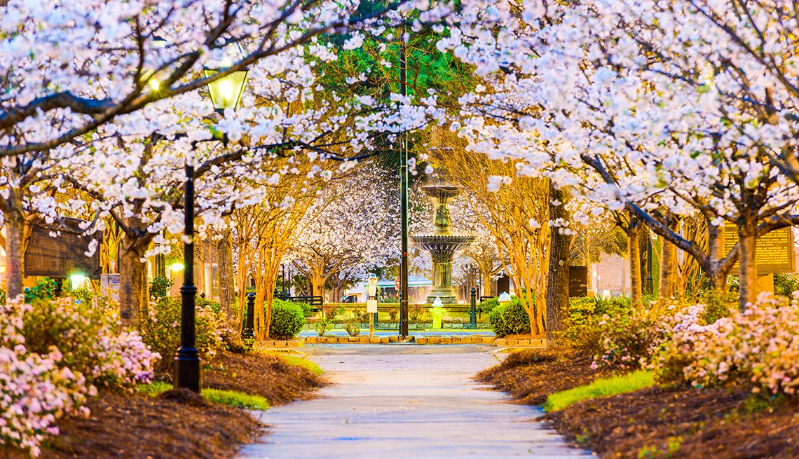 Tattnall Square, Macon, Georgia, Springtime, Night, AARP Foundation Experience Corps Cities