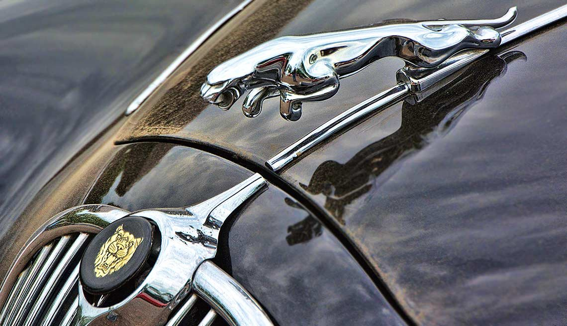 Remember When Cars Had These - Hood Ornament