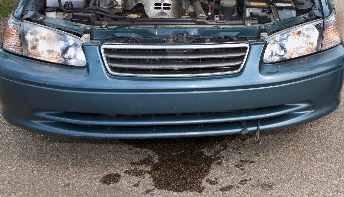 auto safety checklist - leaks