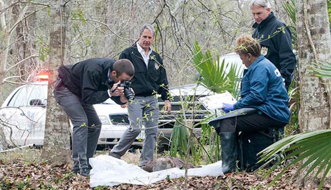 Scott Bakula, Lucas Black, CCH Pounder, NCIS: New Orleans, Fall 2014 TV for Grownups