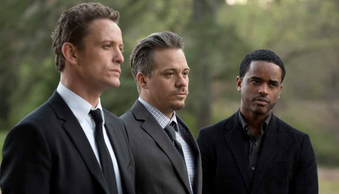 Spring TV Preview 2016, Game of Silence