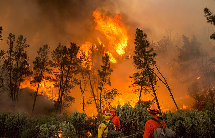 Firefighters ignite a backfire to stop the Loma fire from spreading near Morgan Hill, Calif., Wednesday, Sept. 28, 2016.