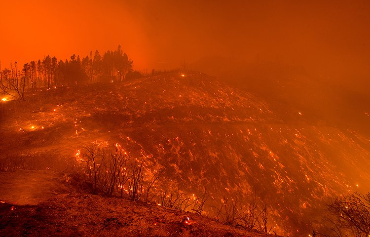 Embers from the Loma fire line a hillside on Loma Chiquita