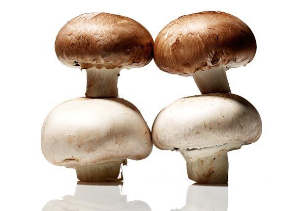 Mushrooms, Super Foods to Fight Flu (Sam Kaplan; Stylist: Matt Vohr for Halley Resources)