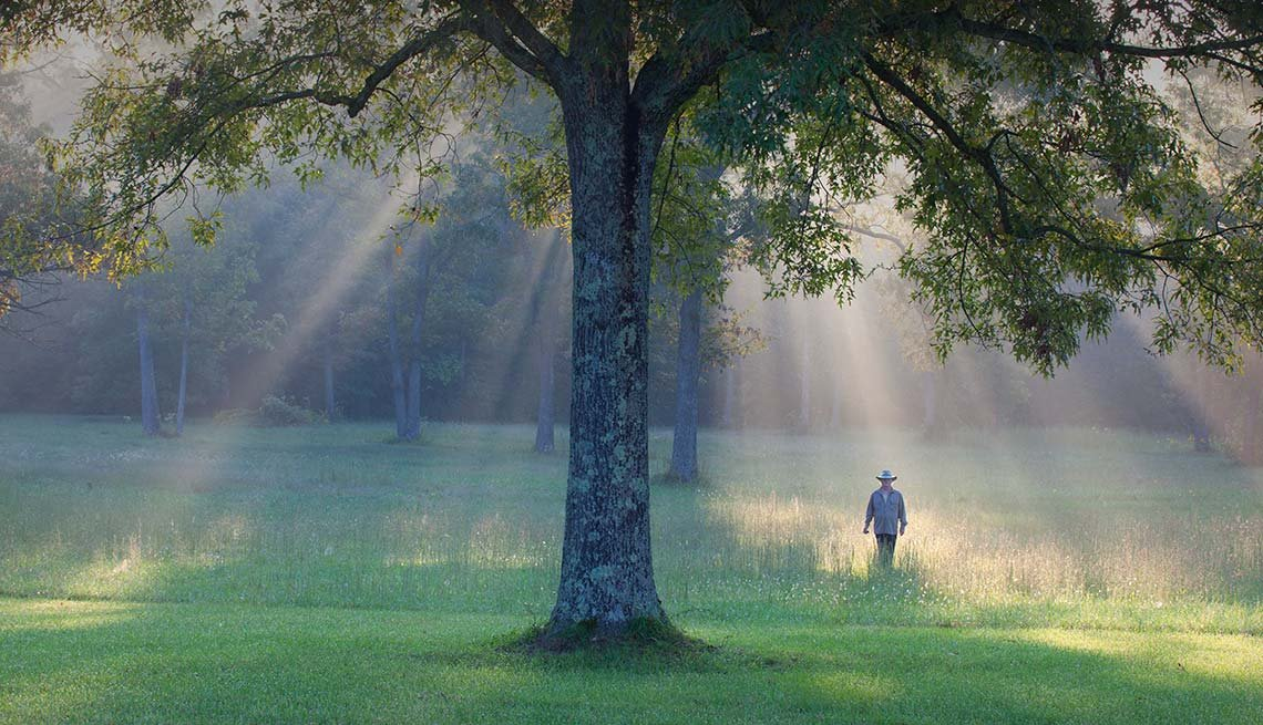 Man walks near trees, Reduce Stress Green Space