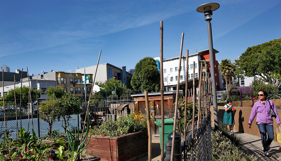 Urban Garden, Livable Neighborhoods  South of Market, San Francisco
