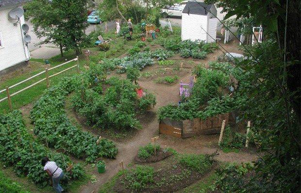 Fresh Start Community Garden, Newport, Vermont