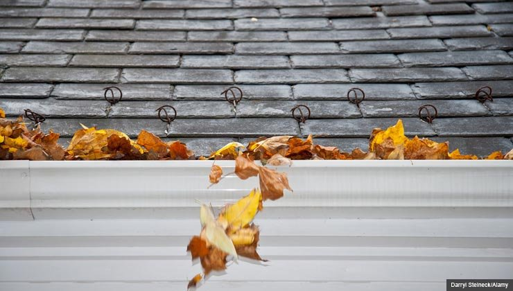 Fall leaves overflowing in a gutter