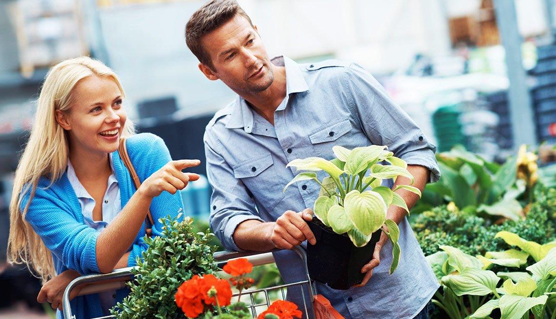 End of  Summer Deals - Bargains For Your Garden