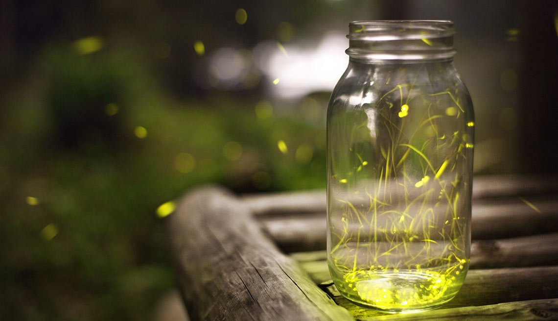 10 Throwback Ways to Enjoy Summer Fun - catch fireflies