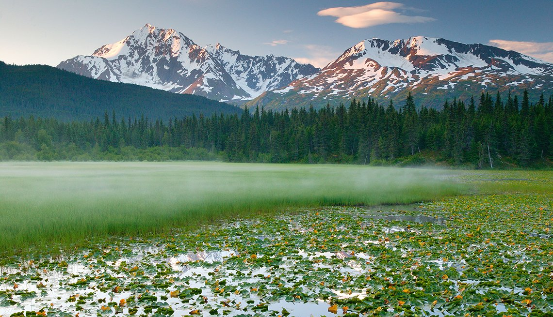 Lily pond along the Seward Highway, Alaska, 9 Thrilling Drives across America, Travel
