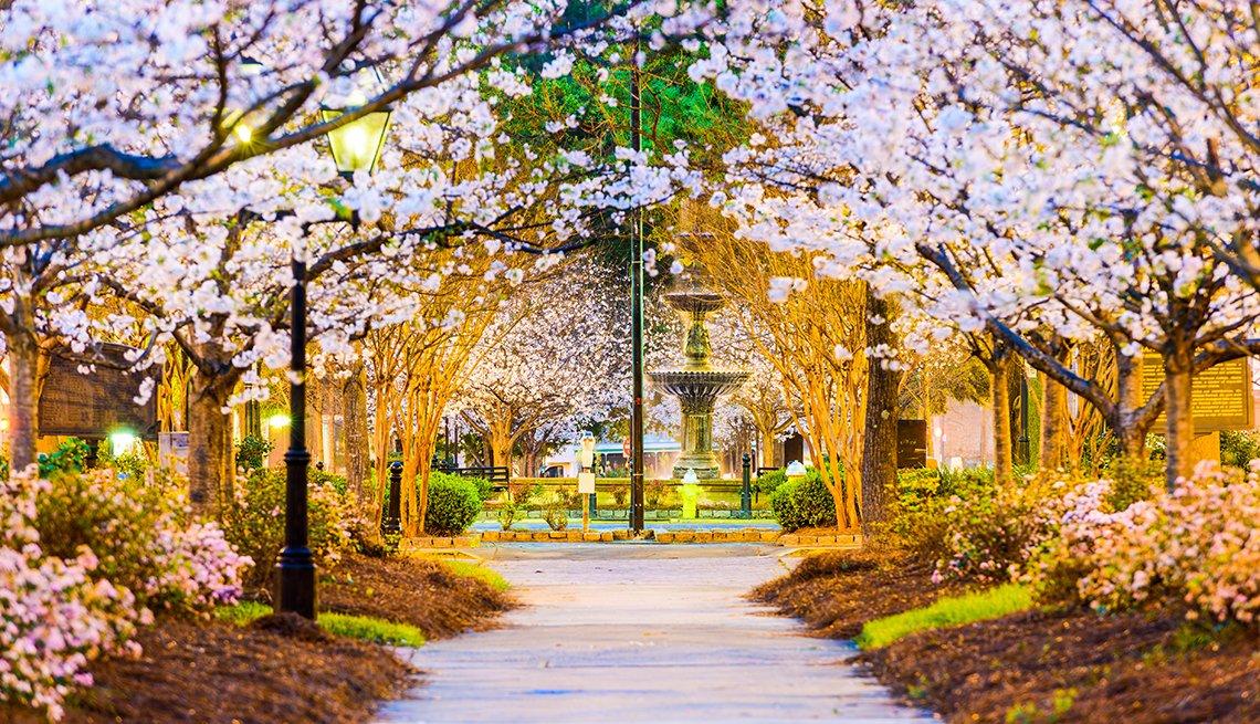 Tattnall Square, Macon, Georgia, Springtime, Night, AARP Foundation Experience Corps Cities