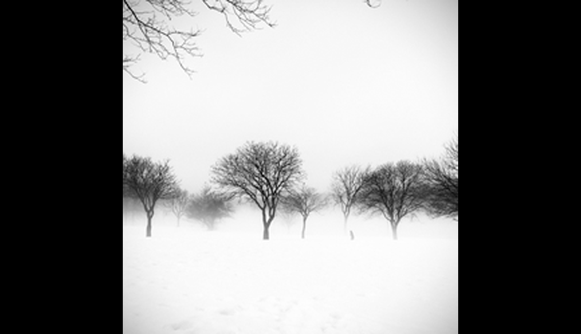 Wintery White Out