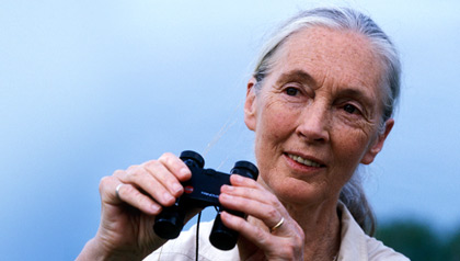 Jane Goodall will speak at the AARP member event