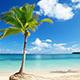 Paraíso tropical con palmeras y playa