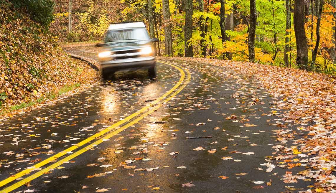 Fall driving tips