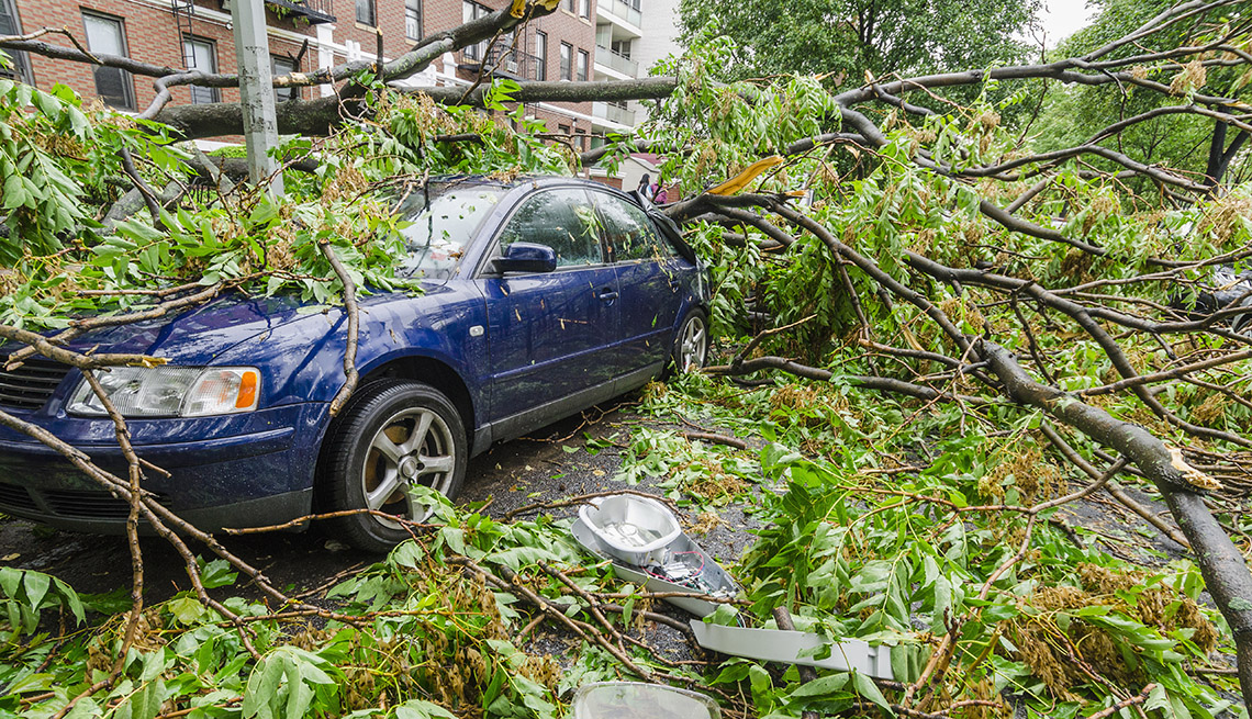 A falling tree damages a vehicle after a storm.