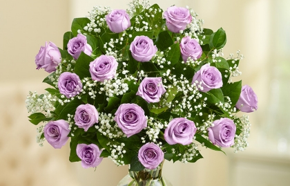 1800 Flowers Purple Rose