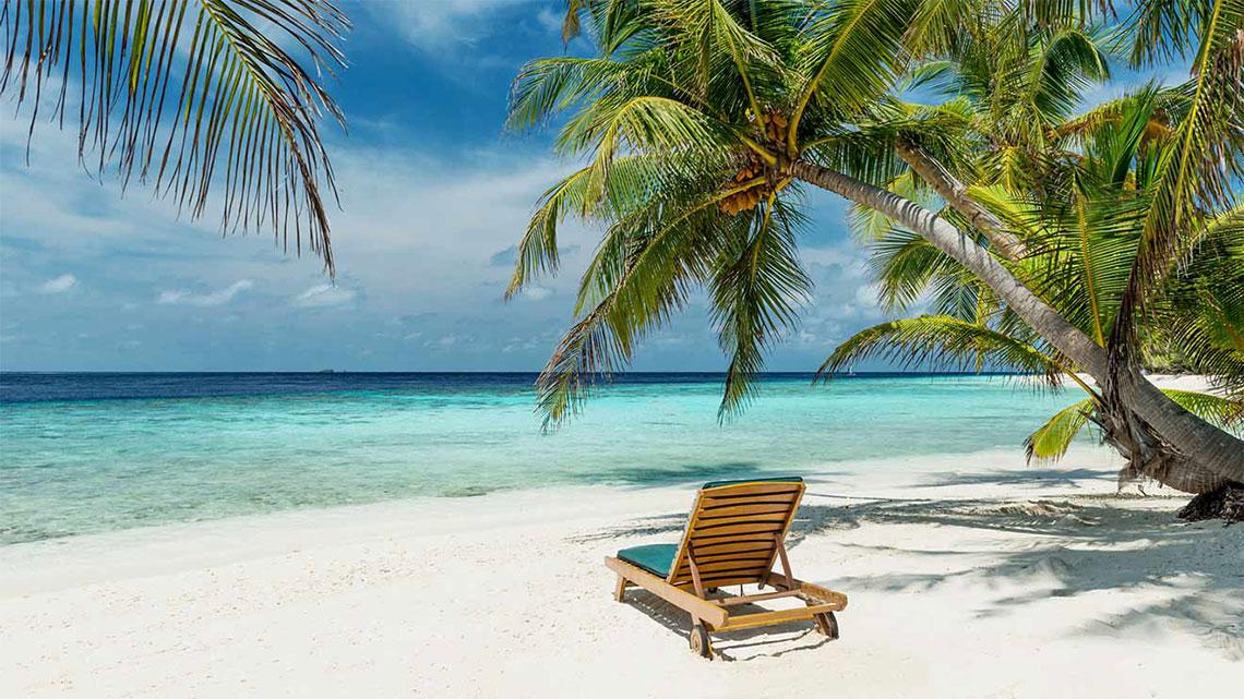Beach chair, palm tree, white sand beach, clear blue water