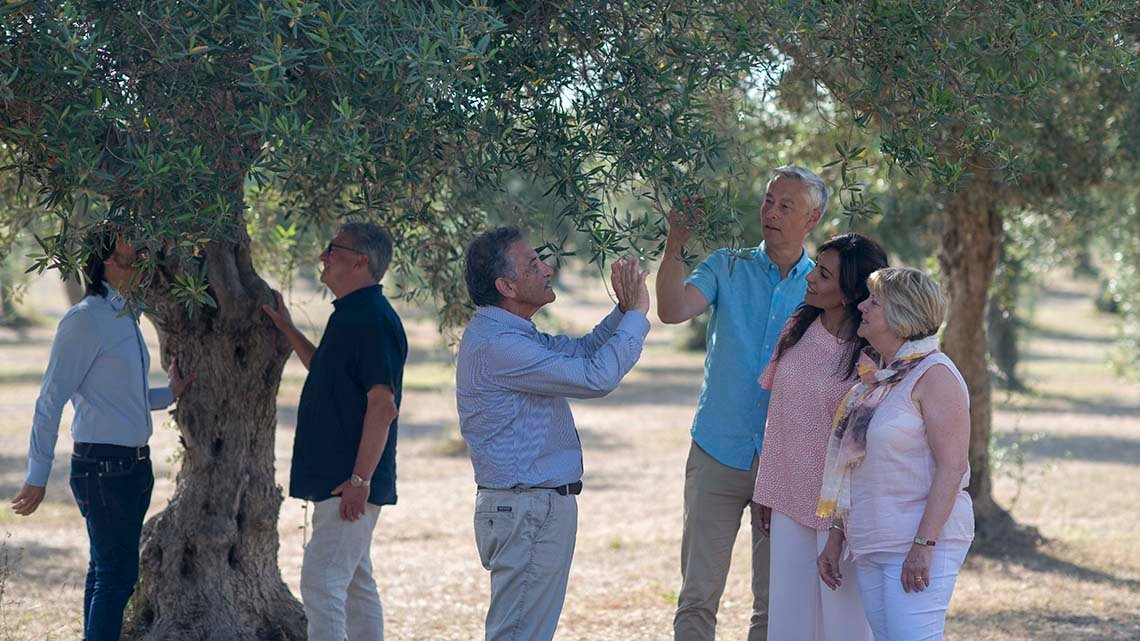 Four men, two women under trees taking pictures with phone