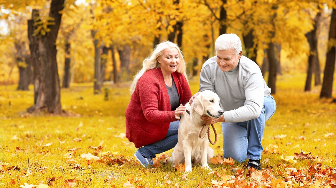 Man, woman petting dog, trees in background