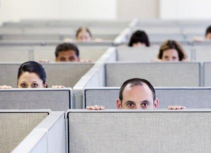 Trabajadores mirando en sus cubículos