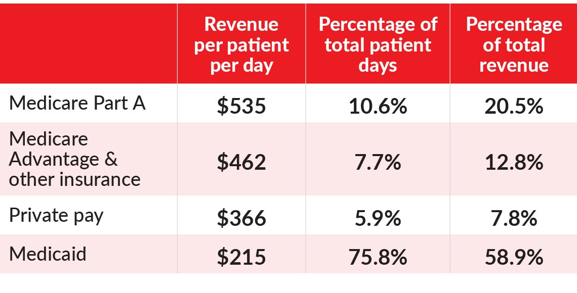 Table showing the revenue per patient per day the percentage of total patient days and the percentage of total revenue as compared between medicare part a medicare advantage and other insurance private pay and medicaid