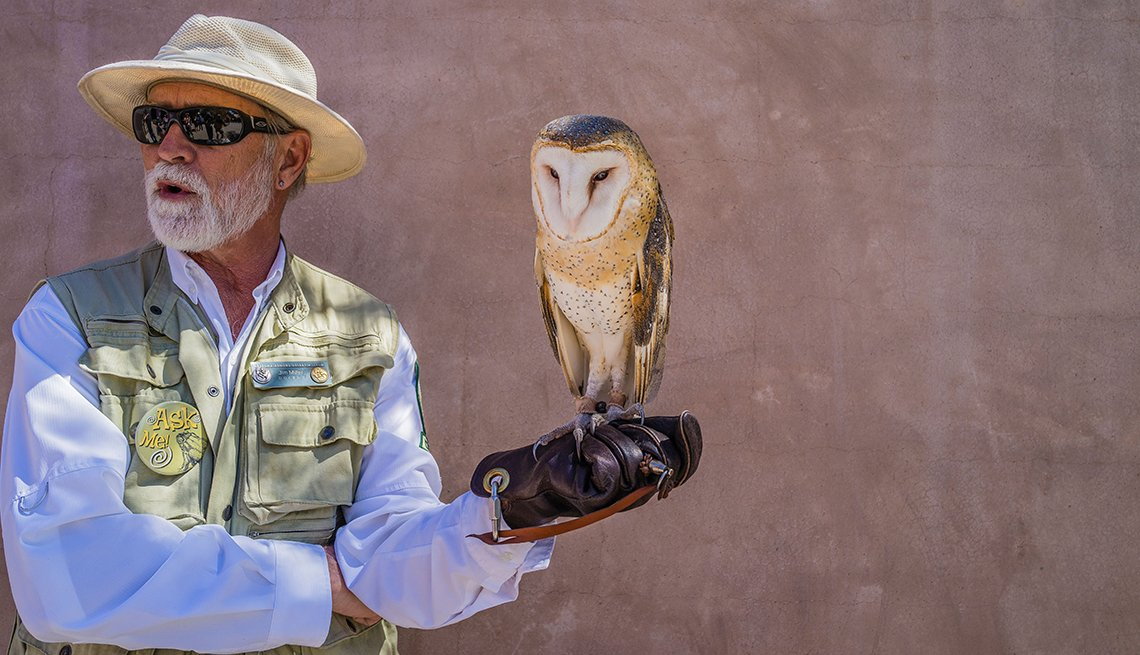 Volunteer with owl at museum