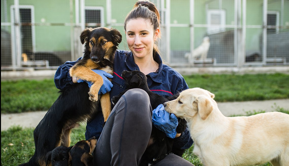 Young woman in dog shelter playing with dogs and choosing which one to adobt.