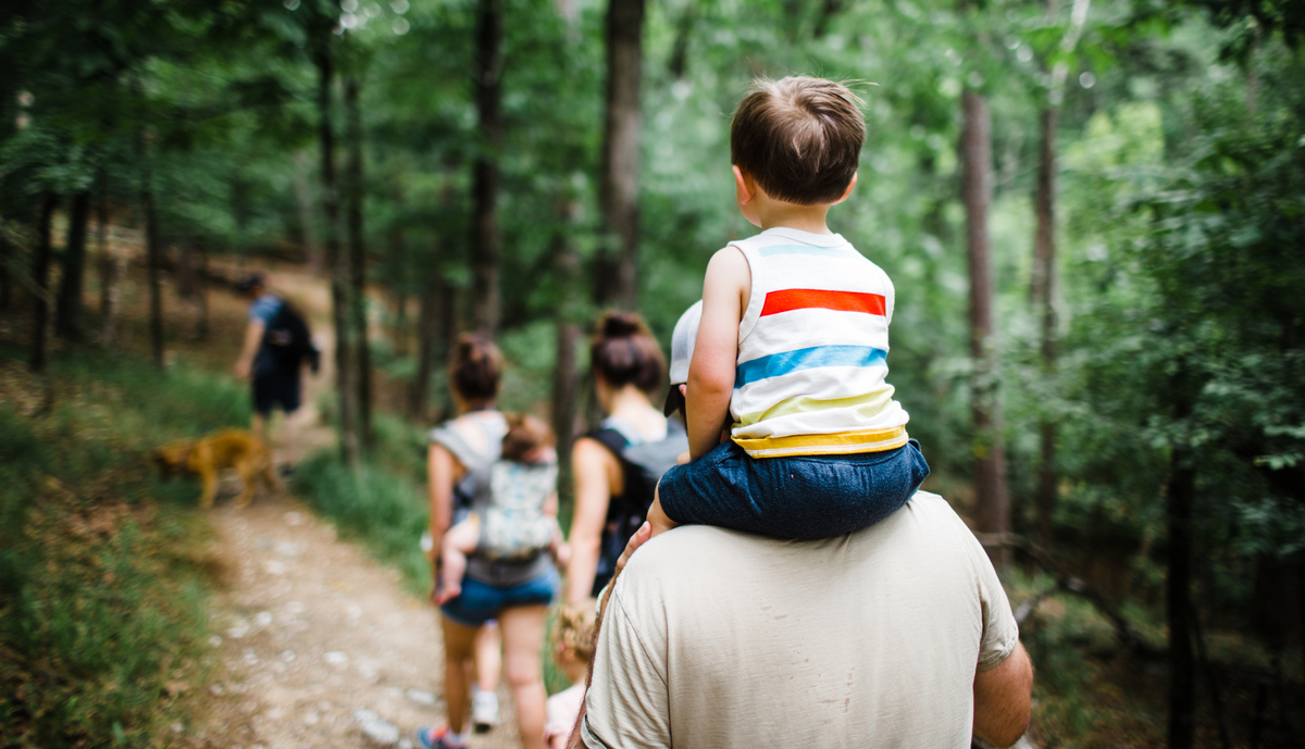 A family on a hike in the woods. A small boy is sitting on his father's shoulders