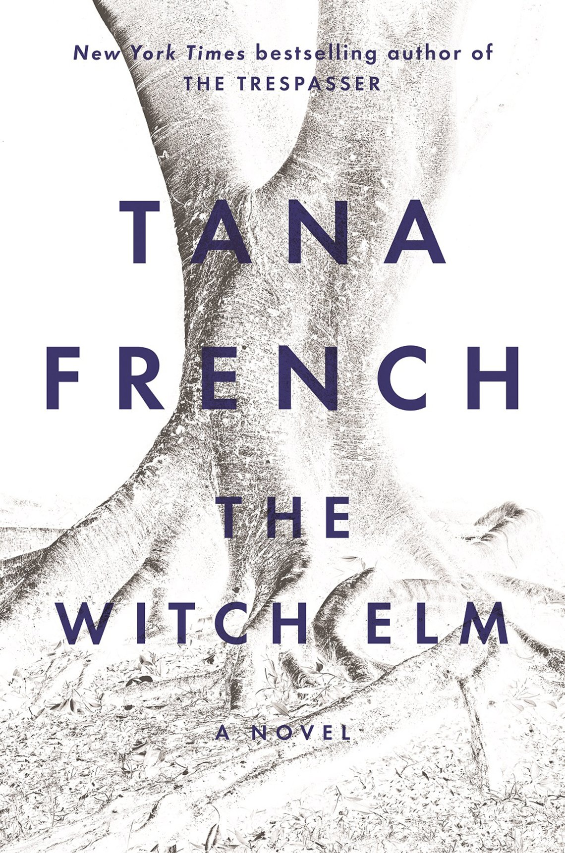 """Book cover reads """"New York Times bestselling author of The Trespasser, Tana French, The Witch Elm, a novel."""