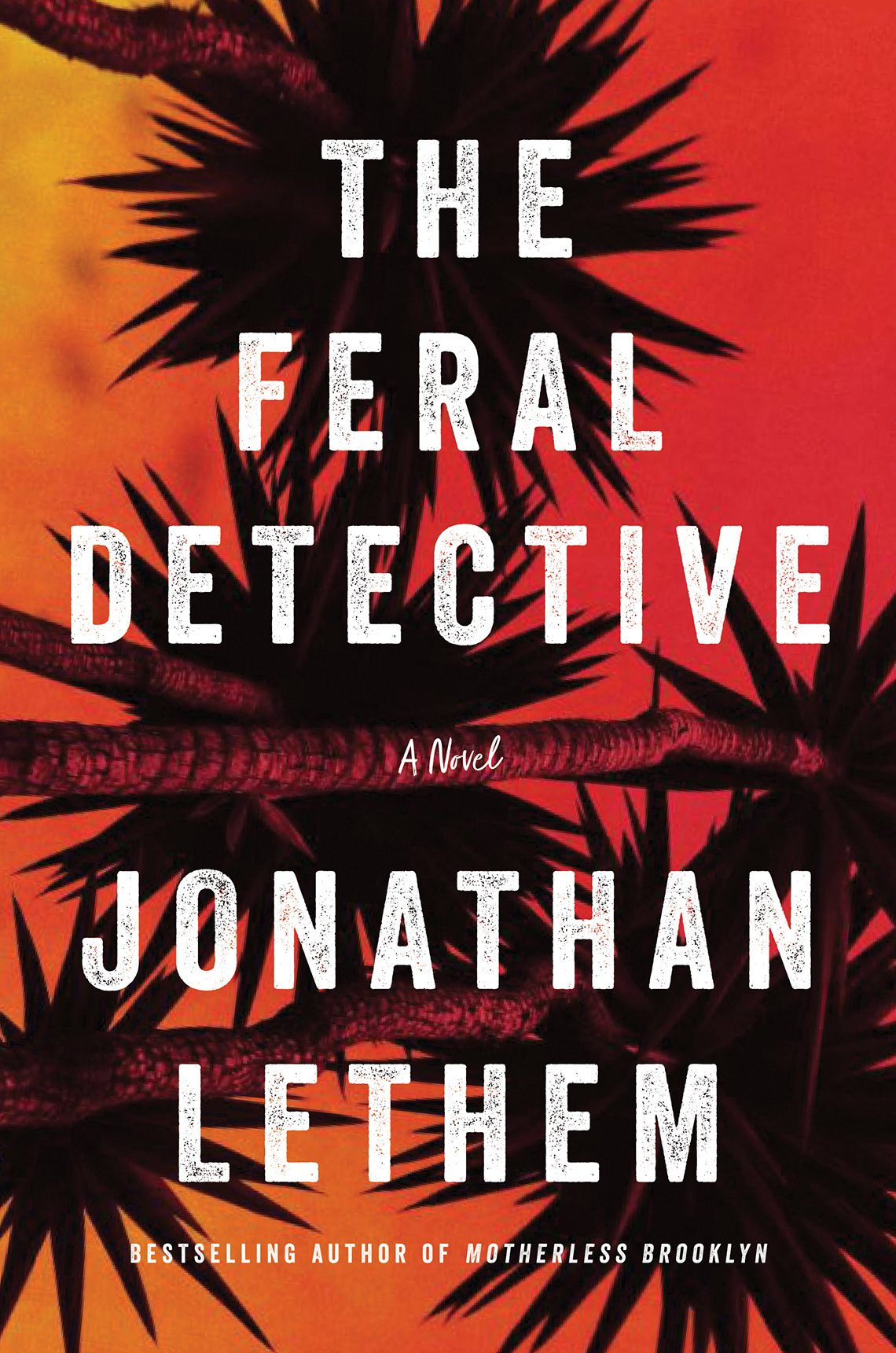 Book cover reads, The Feral Detective, A novel,  Jonathan Lethem