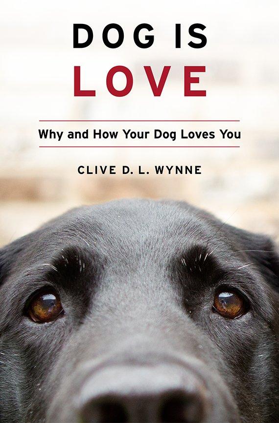 Portada del libro Dog is Love