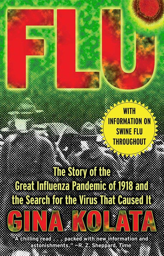 Flu book cover