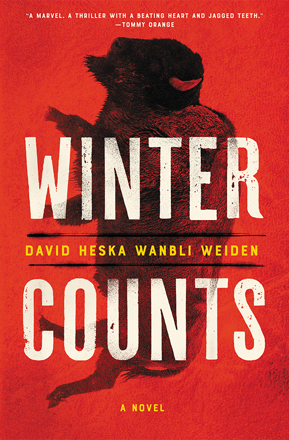 Winter Counts book cover