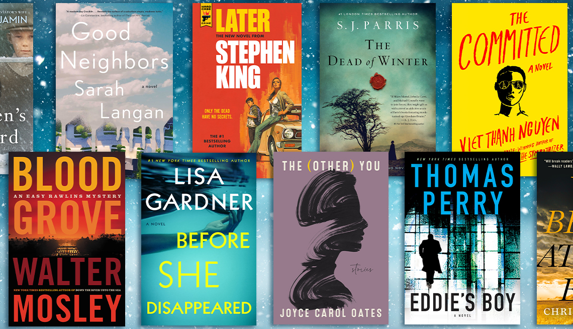 collection of new fiction books for winter