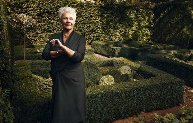 Judi Dench. What I know Now.