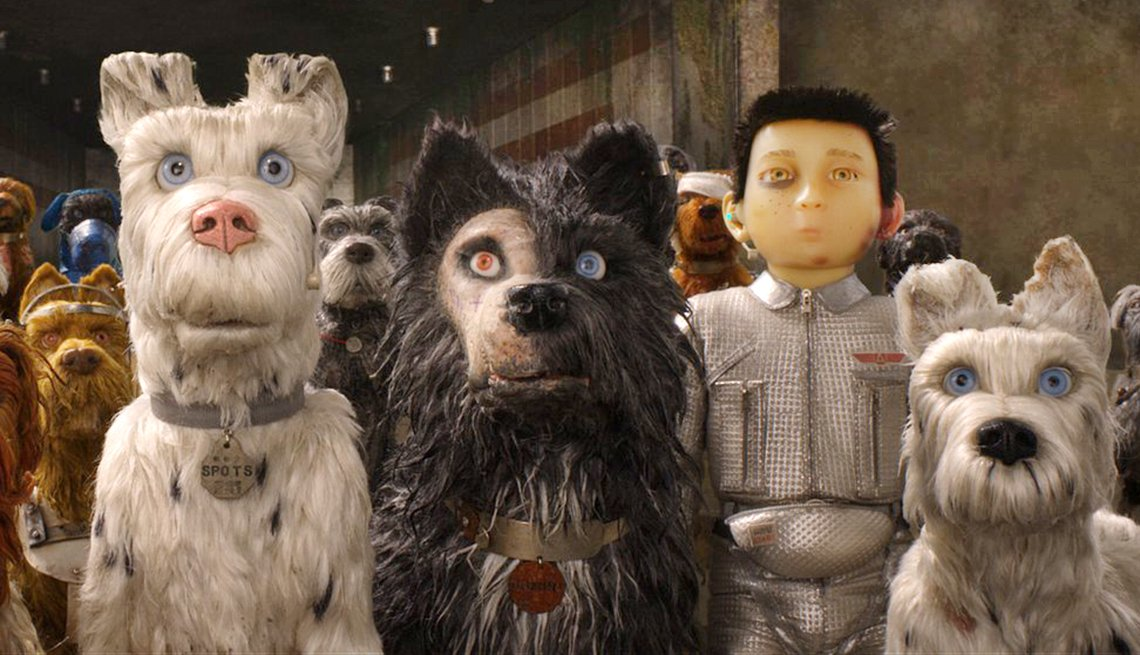 a boy and dogs stare in Isle of Dogs movie