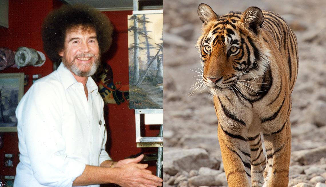 """Una imagen de Bob Ross en """"Bob Ross: Happy Accidents, Betrayal & Greed"""" y un tigre en una escena de """"Life in Color with David Attenborough""""."""