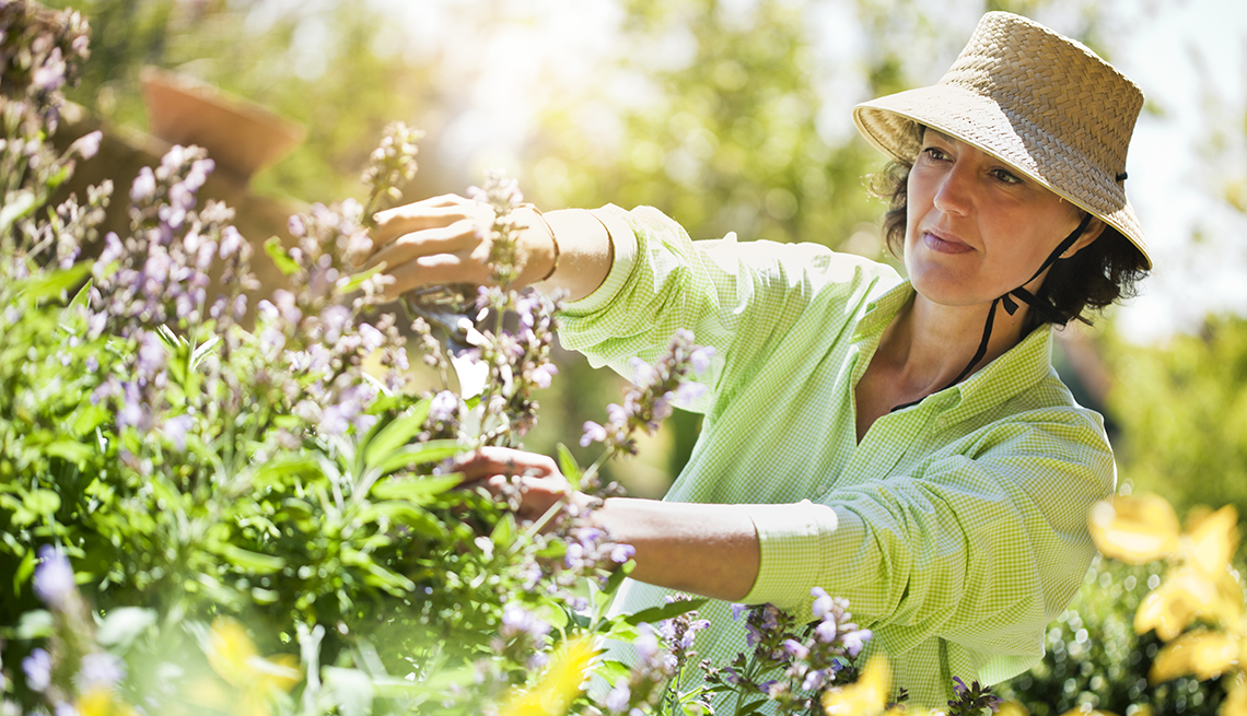 A woman trimming flowers in the garden