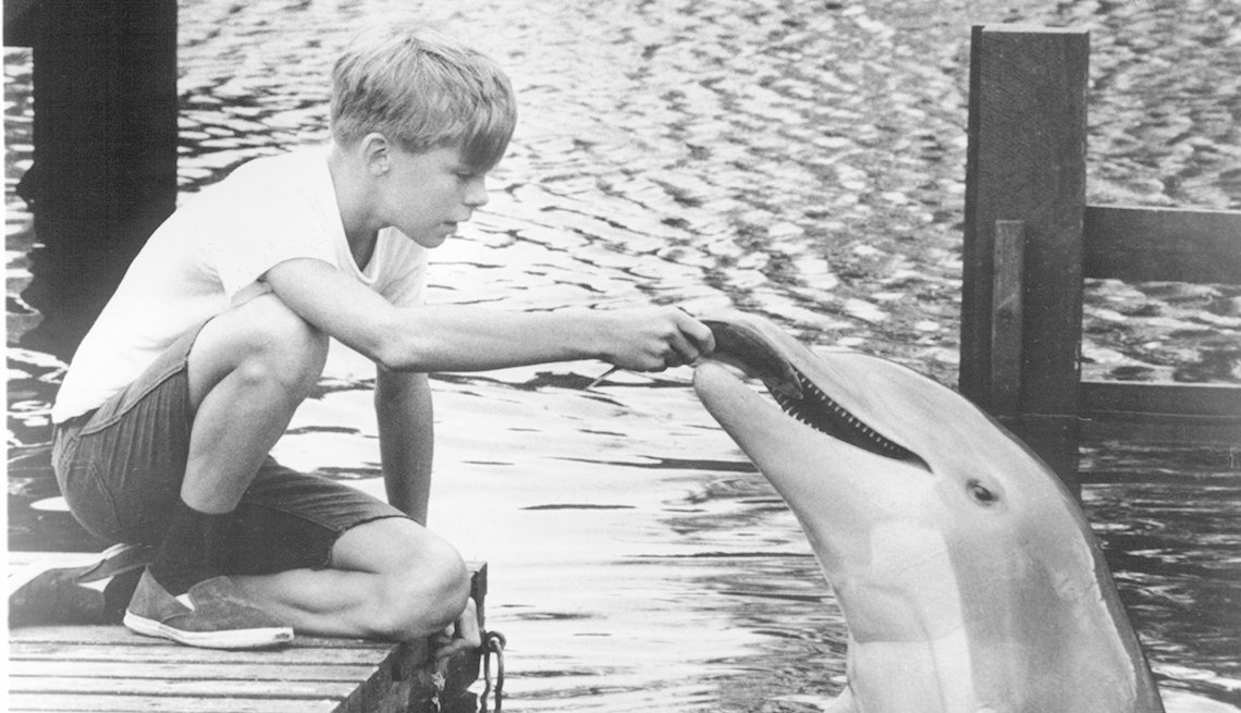 Luke Halpin, Flipper, Boomer TV Shows 1964 debut