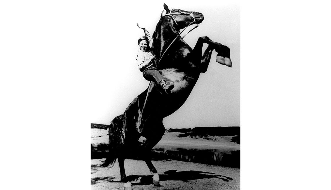 Animales estrellas de cine y TV - El caballo Furia