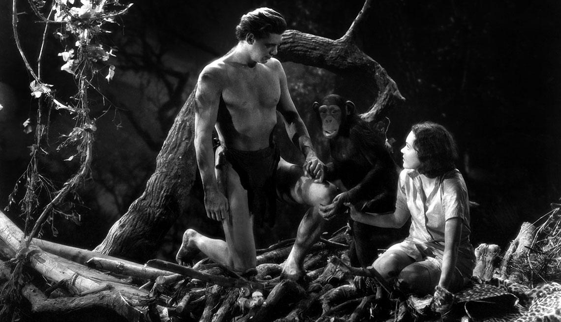 Animales estrellas de cine y TV - El mono Chita, en Tarzán el hombre mono