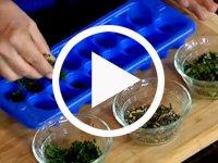Aprende a conservar  las hierbas