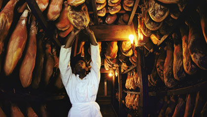 Aged Virginia Hams Hanging in Storage