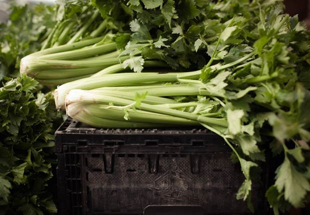 Apio - Alimentos que deberias comprar orgánicos