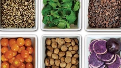 Peruvian Power Foods libro de Manuel Villacorta