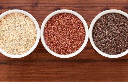 10 tipos diferentes de Quinoa