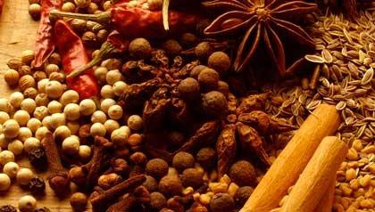 Hoja de laurel, chile, canela, clavo de olor, diferentes especias