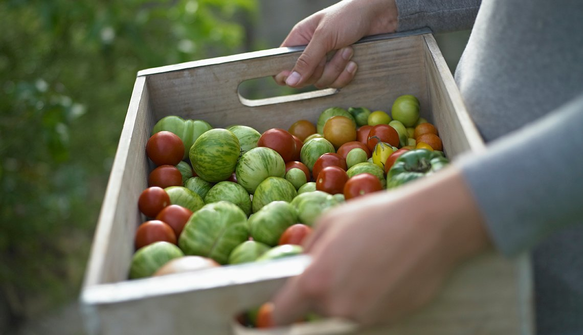 Woman Holds Box Of Garden Tomatoes, Save Money On Organic Food